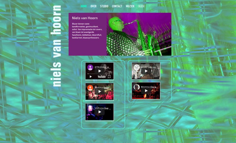 Website Niels van Hoorn